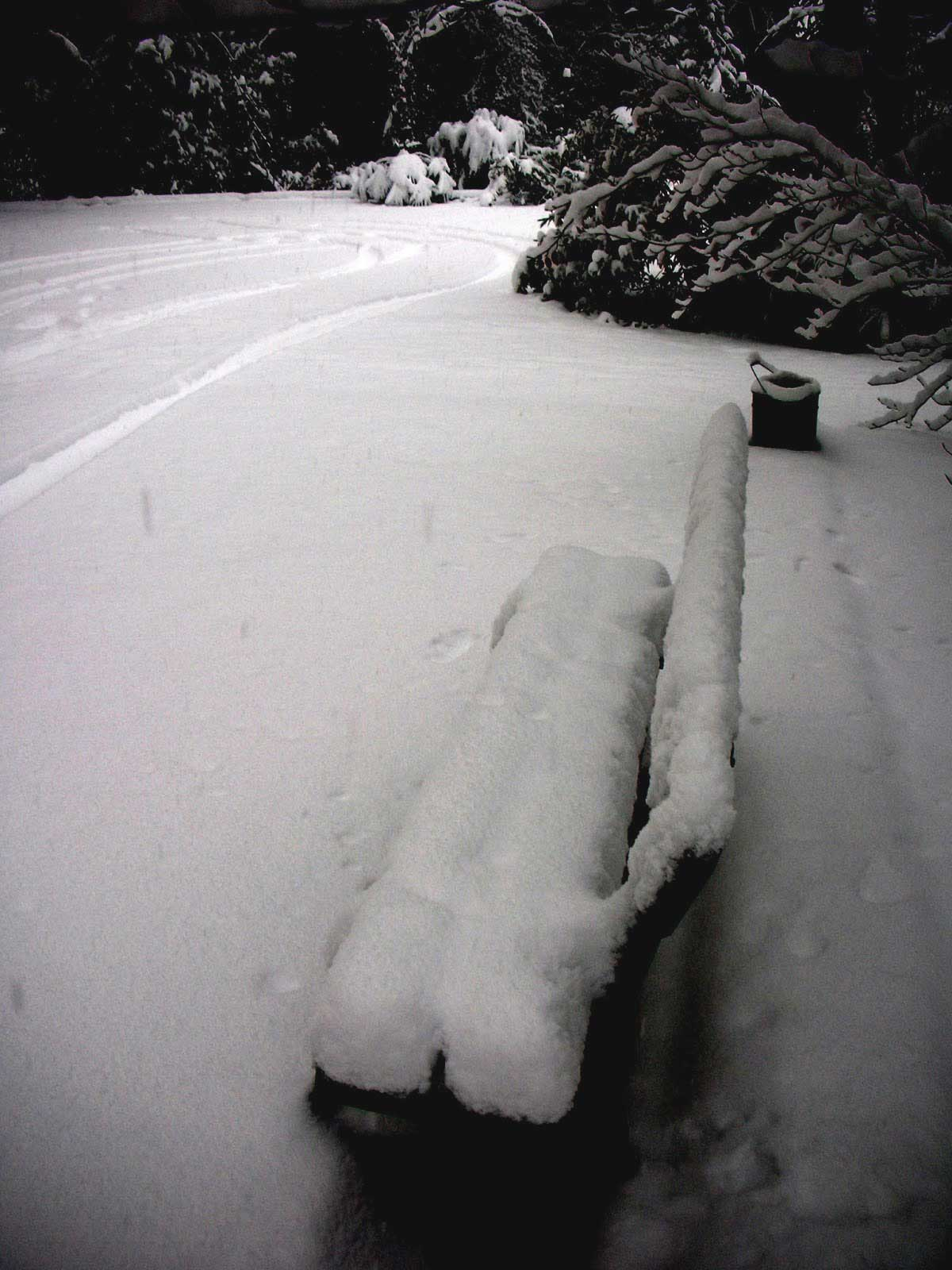 poesia neve