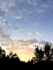 rigastrocca del cielo